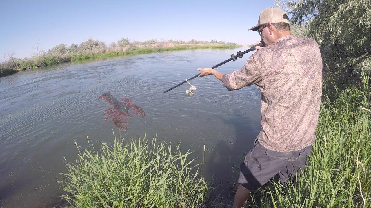 trampa-y-cerbatana-caza-y-pesca