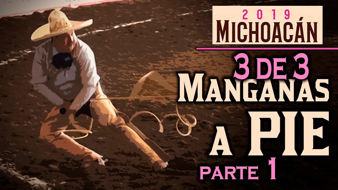 3 de 3 MANGANAS A PIE parte 1 - Congreso Morelia 2019