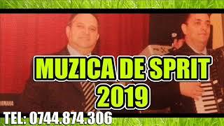 MUZICA DE SPRIT 2019 COLAJ MUZICA DE PETRECERE NOU MUZICA BUNA