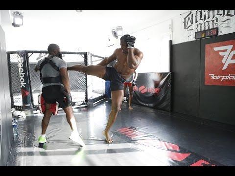 MMA FACTORY #1 MMA PRO