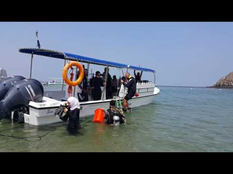 Diver Ola Khalaf diving from Dive Centre Sandy Beach Hotel Dibba UAE 16.09.2016