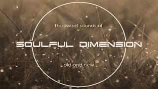 Video Soulful House Mix 30 download MP3, 3GP, MP4, WEBM, AVI, FLV Oktober 2018