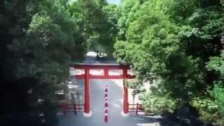 JR東海 そうだ 京都、行こう。「下鴨神社」篇