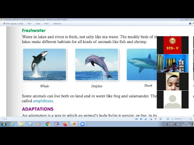 Online Classes | 29-05-2020 | STD 5 | Science | Chapter 2, Revision