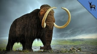 Repeat youtube video Wooly Mammoths Might Be Coming Back to Life!