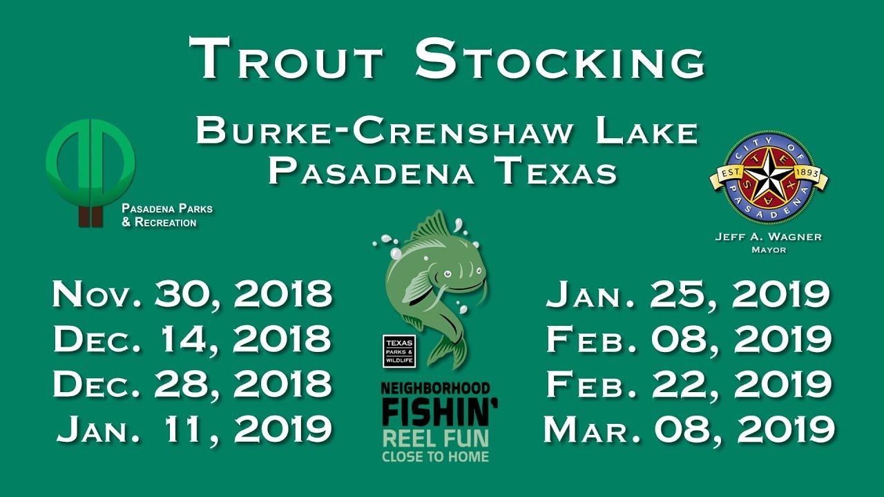 Rainbow Trout Fishing in Pasadena 2018 - 2019