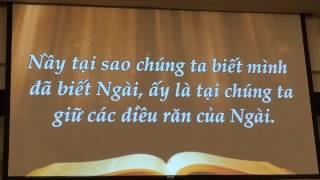 Tin cậy vậng lời-thánhca TinLành-Đọc Kinh Thánh đối đáp #31-Điều răn mới