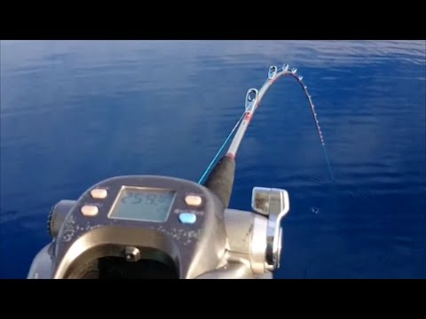It Is Fishing In The Deep Sea More Than 800 Feet