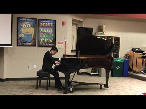 impromptu in c-sharp minor, op. 66 (fantasy)