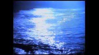 Roger Taylor & Yoshiki -