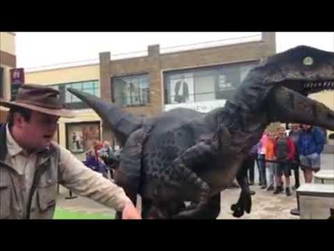 Raptor on the loose! Wild Dinosaur Warning!