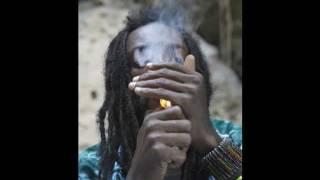 I Wayne - Herb Fi Legalize