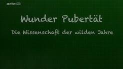 Wunder Pubertät: Die Wissenschaft der wilden Jahre | HD | Arte