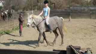 Ma Vie c'est les chevaux mp3