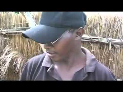 ALARM in Lietnhom Sudan