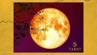 VIRGO FULL MOON! ~ Can't you see ~ [February 25, 2021]