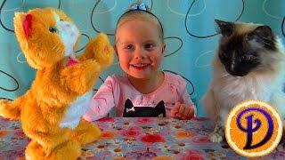 Котенок Дейзи Интерактивная игрушка Игривый котенок FurReal Friends Hasbro