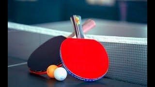 Стратегия ставок на спорт I Настольный теннис