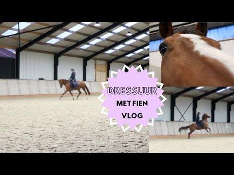 TRAINEN met Fien & allebei mijn paarden een huidinfectie :( | Romy Oudshoorn