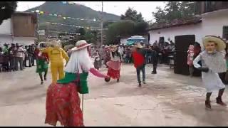 Danza de los viejos locos de Quechultenango Gro. En jocutla