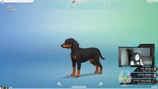 Sims 4 // CAS // Sub Lots //