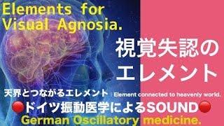 🔴ドイツ振動医学による視覚失認編|Visual Agnosia by German Oscillatory Medicine.
