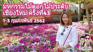 มหกรรมไม้ดอกไม้ประดับเชียงใหม่ ครั้งที่43 : The 43th Chiang Mai Flower Festival 2019