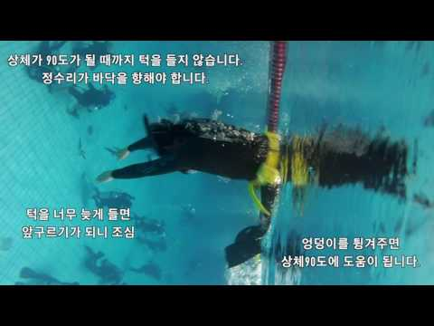 스킨다이빙  머리부터 입수 덕다이빙 교본영상