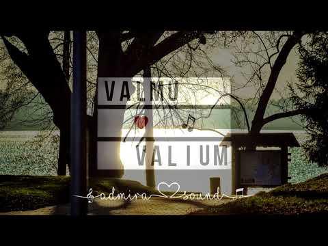 valium and ambien