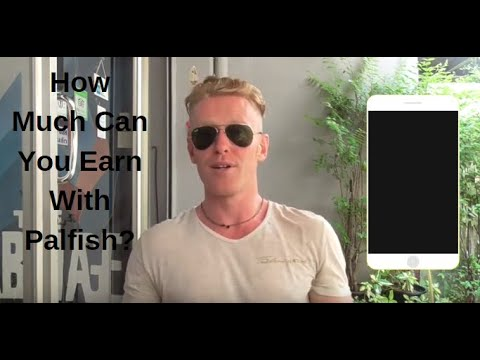 Palfish Pay: How Much Can You Earn Teaching for PalFish?