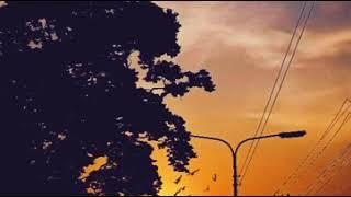 AASHIQUI 2 | | TUM HI HO | | VIDEOGRAPHY | | TAWAF ALAHI