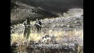 Холодная война. Война в Афганистане