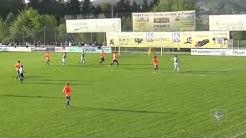 Toto-Pokal Halbfinale: SV Schalding.-Heining - SV Wacker Burghausen