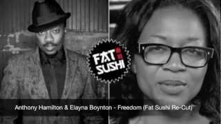 Anthony Hamilton & Elayna Boynton - Freedom (Fat Sushi Re-Cut)