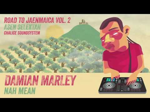 Damian Marley - Nah Mean (Road to Jaenmaica Vol.2)