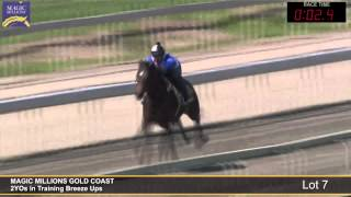 Lot 7 - 2YOs in Training Breezeup Thumbnail