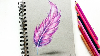 Feather drawing with colored pencil! | Leontine van vliet