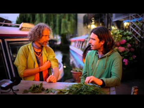 How to forage for wild, organic greens (wild grass) with Piter Caizer