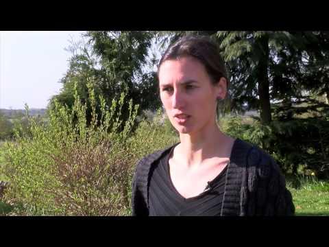 Arkæologi ved Herning motorvejen (1 af 2)