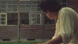 Dead or Alive 2: Birds - Realise [Miike fanvid]