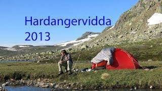Hardangervidda July 2013