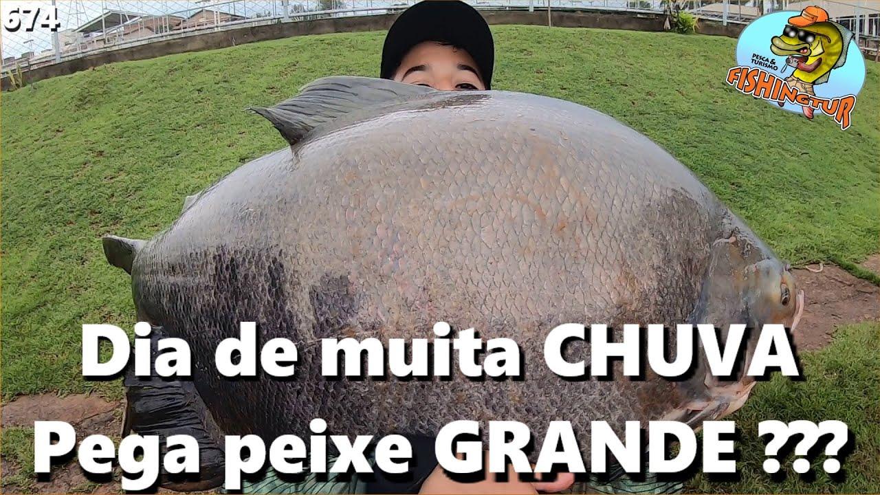 Dia de muita chuva PEGA Peixe GRANDE ??? - Fishingtur na TV 764 - Pesque Pague Esmeralda