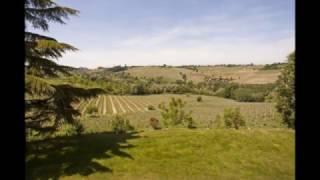 Бизнес в Италии - Продается уникальное поместье XIX века с винодельческим заводом в Пьемонте