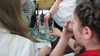 Фрагмент урока биологии в 7 классе с использованием цифровых датчиков по теме