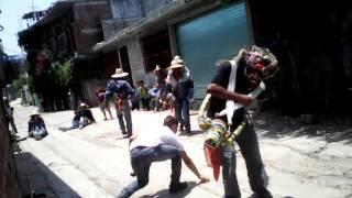 Danza de los pescados 2016, Quechultenango,Gro
