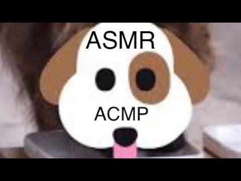🍎ПАРОДИЯ НА АСМР🍎Ultimate Dog ASMR//Presented By Katvickas98 🍎