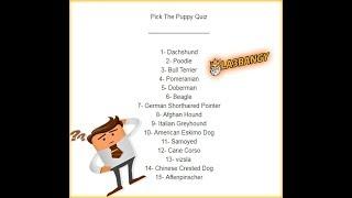 حل لغز انواع الكلاب ؟؟ Pick The PuppyQuiz