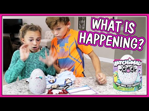 WEIRDEST LIQUID BATH BOMB CHALLENGE | We Are The Davises from YouTube · Duration:  15 minutes 5 seconds