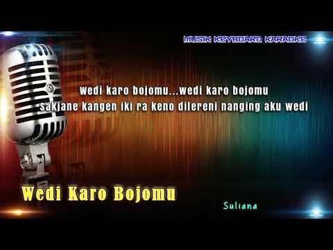 Suliana - Wedi Karo Bojomu Karaoke Tanpa Vokal