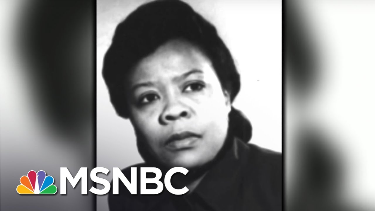 Marie Van Brittan Brown: Inventor | 7 Days Of Genius | MSNBC